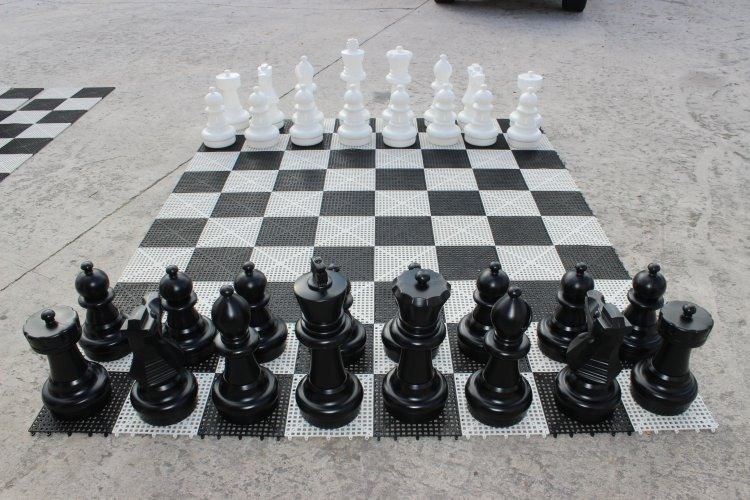Giant Chess (8'L 8'W)