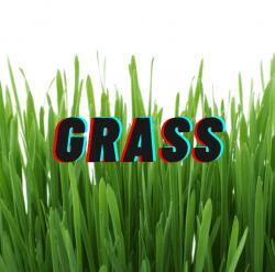 Surface Fee (Grass)