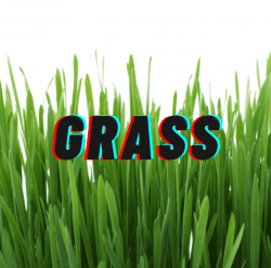 Surface Fee (Grass)